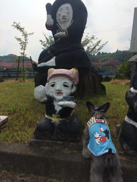 Photo 2017-07-27 15 36 49