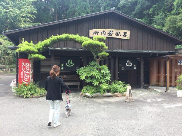 Photo 2017-07-27 15 59 47