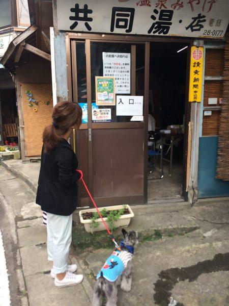 Photo 2017-07-27 16 17 29