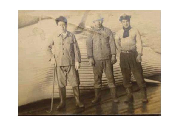 昭和22年4月に撮影されたもので、引揚場のナガスクジラと船員